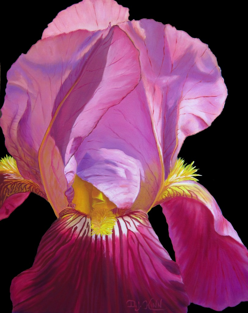 Purple Bearded Iris, 16x20 oil on stretched canvas: $900